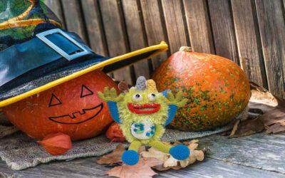 Halloween – nasz Harry opowiada o dyniach i horrorach